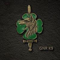 Grupo de Intervenção Cinotécnico da GNR