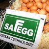Safe Food Corporation