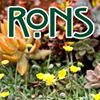 RONS in Grover Beach