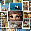 81 Things To Do In Jordan