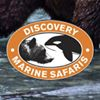 Discovery Marine Safari Ltd.