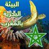 حماية البيئة البحرية بالمغرب