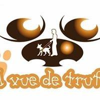 """Ecole Chiens Guides d'Aveugles Normandie """"A Vue de Truffe"""""""