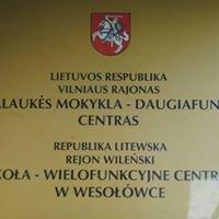 Szkoła- Wielofunkcyjne Centrum w Wesołówce- filia Gimnazjum św. S. Kostki