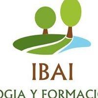 IBAI Pedagogía y formación. Aprendizaje holístico