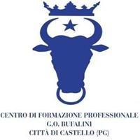 Scuola Bufalini