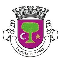 Câmara Municipal de Oliveira do Bairro