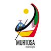 Município da Murtosa