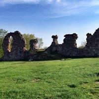 Ruiny Zamku Kurzętnik