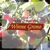 Winne Grono