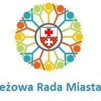 Młodzieżowa Rada Miasta w Elblągu