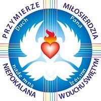 Przymierze Miłosierdzia w Warszawie