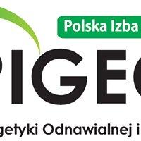 Polska Izba Gospodarcza Energetyki Odnawialnej i Rozproszonej