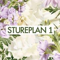Stureplan 1