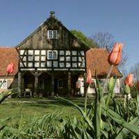 Mały Holender - dom podcieniowy na Żuławach