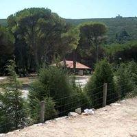 Parque de Campismo Rural de Montejunto