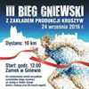 BIEG Gniewski
