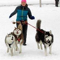 Petsitter - Joanna Szeler, dogs hotel, psi hotelik