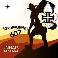 Agrupamento 607 de Unhais da Serra