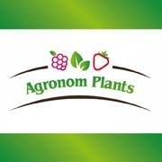 Agronom Plants
