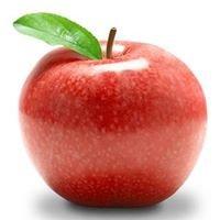 Fitmedical - dieta, zdrowe odżywianie