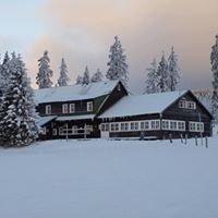 Lesní bouda horský hotel a ekofarma