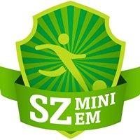 SZ-Mini-EM