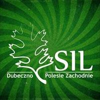 """Stowarzyszenie Inicjatyw Lokalnych """"Dubeczno - Polesie Zachodnie"""""""