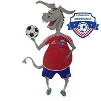 Fussballschule Boppardinho