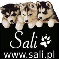 Sali.pl