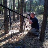 Leśne Studio Filmowe, Lasy Państwowe