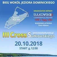 Cross Sułkowskiego