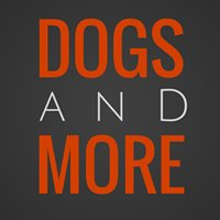 Dog Behaviour by Dogs and More