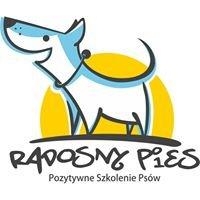 Radosny Pies - pozytywne szkolenie psów
