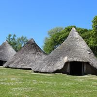 Castell Henllys Iron Age Fort