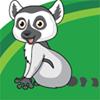 Madagaskar Sklep Zoologiczny