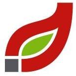 Alternative Energy Solutions International Inc.