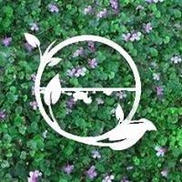 Green Channel Foundation