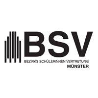 BezirksschülerInnenvertretung Münster