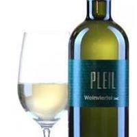 Weinbau Pleil