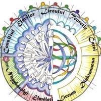 Consiliul Şcolar al Elevilor Liceului Teoretic Carei