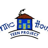 Attic House Teen Project Longford
