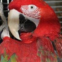 Sklep Zoologiczny Świat Zwierząt Płock