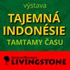 Výstava Tajemná Indonésie I Tamtamy času