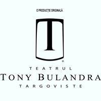 Teatrul Municipal Tony Bulandra
