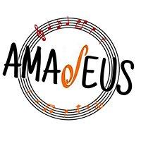 Amadeus Strasbourg