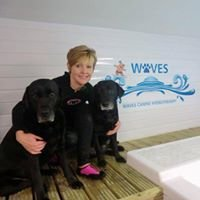 Waves Canine Hydrotherapy