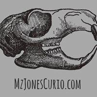 Mz. Jones' Curiosities