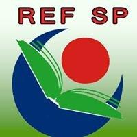 Roma Education Fund - Scholarship Program