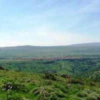 Sindia in Limba- Sas  Noas dae sa Bidda de Sindia in Sardu.